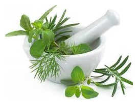 Ayrveda - one of the oldest forms of holistic treatment
