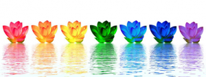 Chakra flowers representing the seven major chakras - PsychicStudent.com